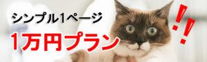 一万円プラン猫